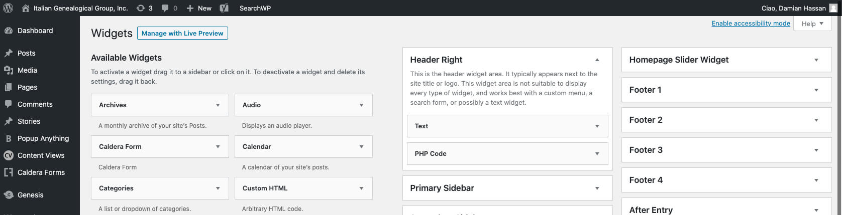 The WordPress Widgets page